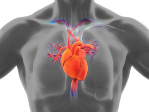 Antihyperglycemic Agents and Heart Failure (HF): An Examination of Recent Studies