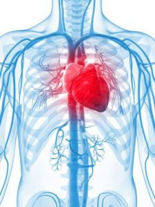 Insuffisance cardiaque – Covance