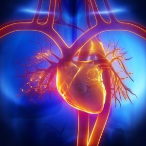 cardiomyopathie diabétique