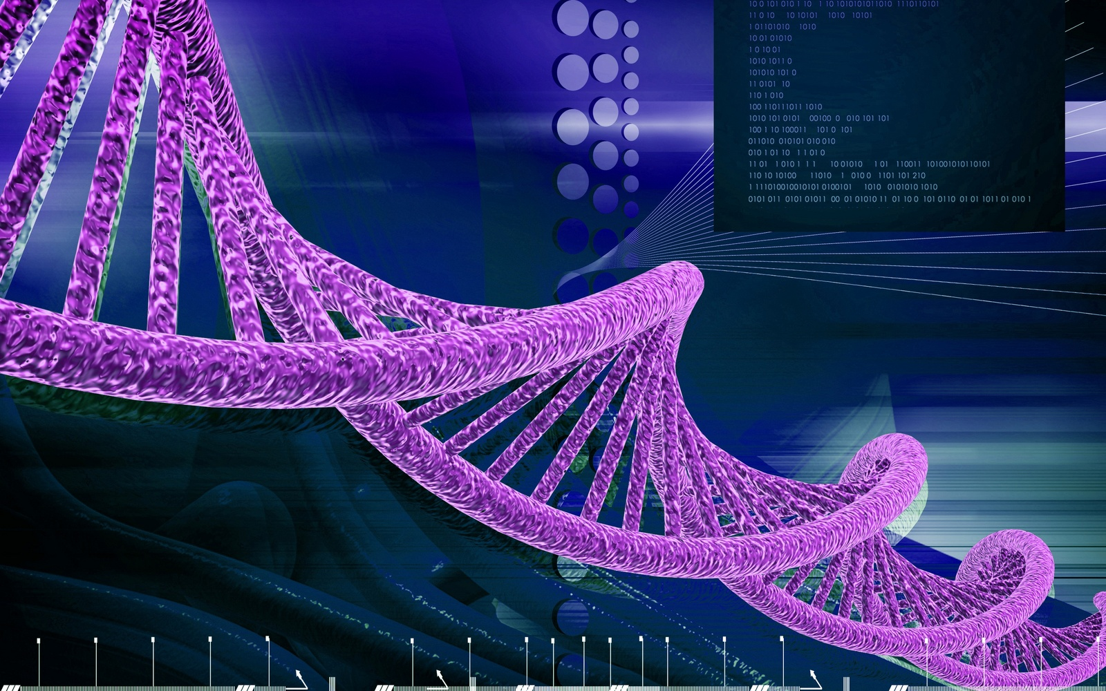 Purple DNA Strand
