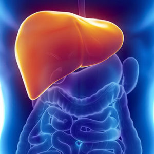 NASH NAFLD Blog