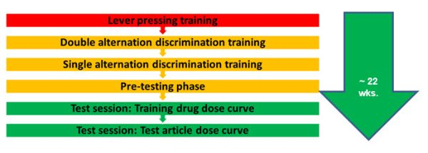 Image of the Timeline of In-Life Phase of the Drug Discrimination Test