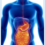 Inflammatory Bowel Disease Clinical Studies – Where Do We Go From Here?