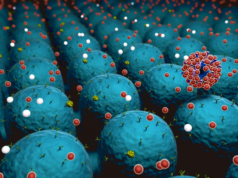 Field of cells with receptors