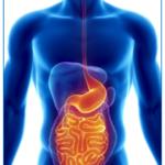 Minimiser l'effet placebo dans les études cliniques sur la maladie inflammatoire de l'intestin