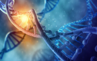 Gene Therapies